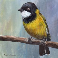 Art: Golden Whistler by Artist Janet M Graham