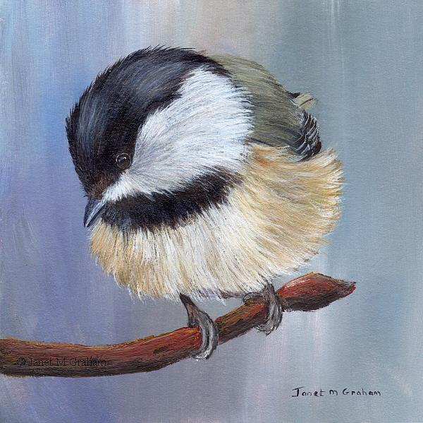 Art: Black Capped Chickadee No 4 by Artist Janet M Graham