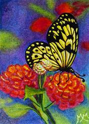 Art: Butterfly Summer - MM08  (SOLD) by Artist Monique Morin Matson