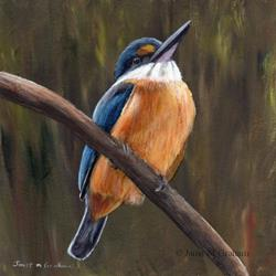 Art: Sacred Kingfisher by Artist Janet M Graham