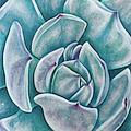 Visit new EBSQ artist Jasmine Star's profile