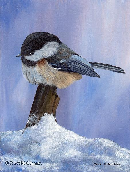 Art: Winter Chickadee by Artist Janet M Graham