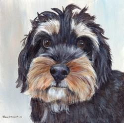Art: Adorable Schnoodle by Artist Janet M Graham
