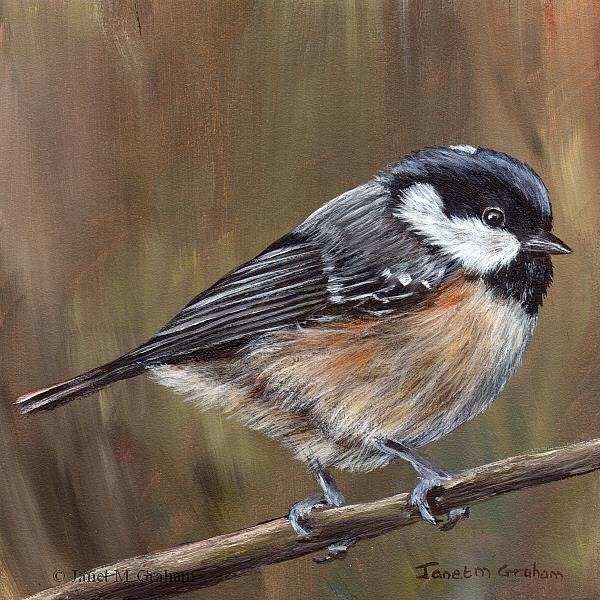 Art: Coal Tit by Artist Janet M Graham
