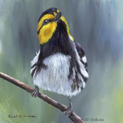Art: Golden Cheeked Warbler by Artist Janet M Graham