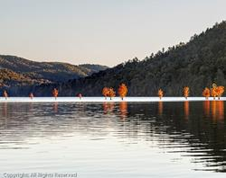 Art: Fire On The Water by Artist Todd Suttles