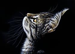 Art: Admiration  (SOLD) by Artist Monique Morin Matson