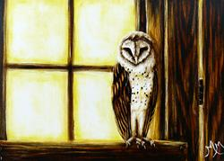 Art: Barn Owl  (SOLD) by Artist Monique Morin Matson