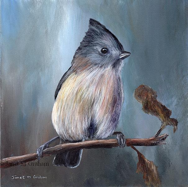 Art: Oak Titmouse by Artist Janet M Graham