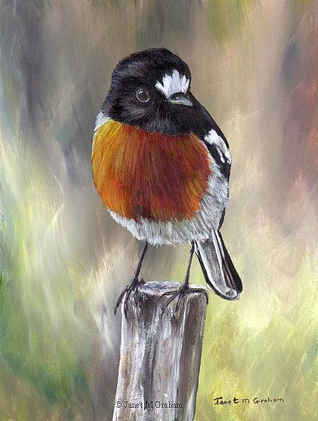 Art: Scarlet Robin No 3 by Artist Janet M Graham
