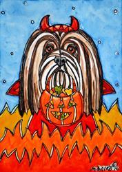 Art: Devilhasa Apso with Pumpkin by Artist Melinda Dalke