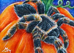 Art: Spider & Pumpkin  (SOLD) by Artist Monique Morin Matson