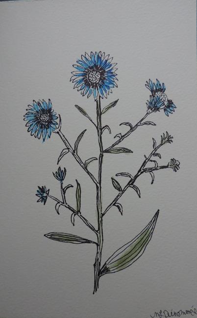 Art: cornflower by Artist Nancy Denommee