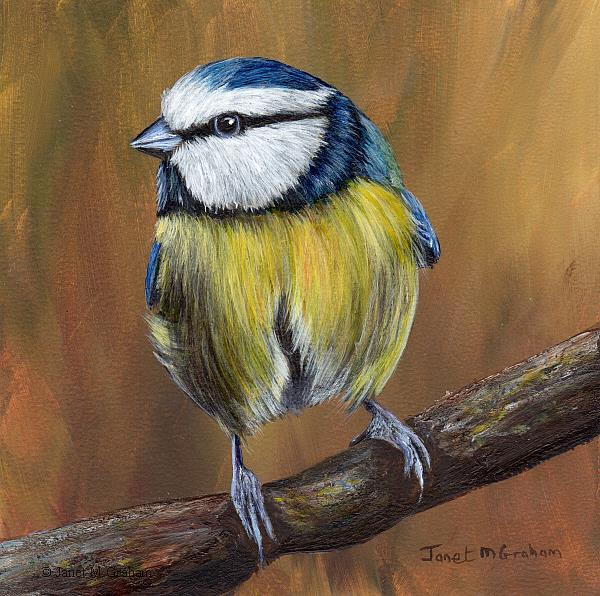 Art: Blue Tit No 5 by Artist Janet M Graham