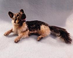Art: Silk Furred German Shepherd by Artist Camille Meeker Turner