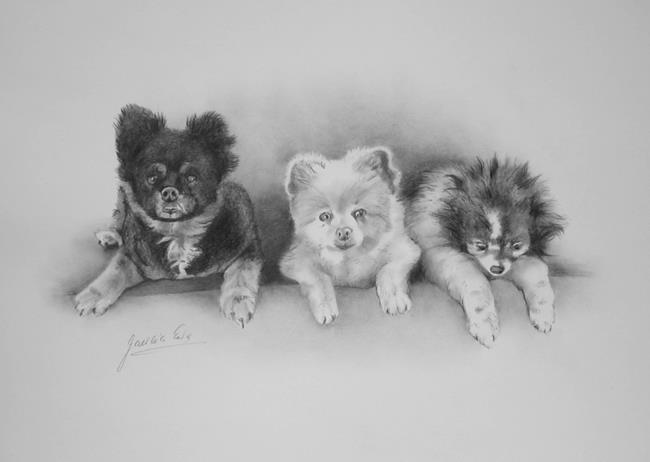 Art: Three Dogs by Artist Ewa Kienko Gawlik