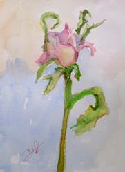 Art: Pink Rose Bud by Artist Delilah Smith