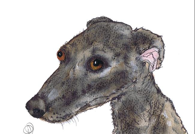 Art: GREYHOUND g603 by Artist Dawn Barker