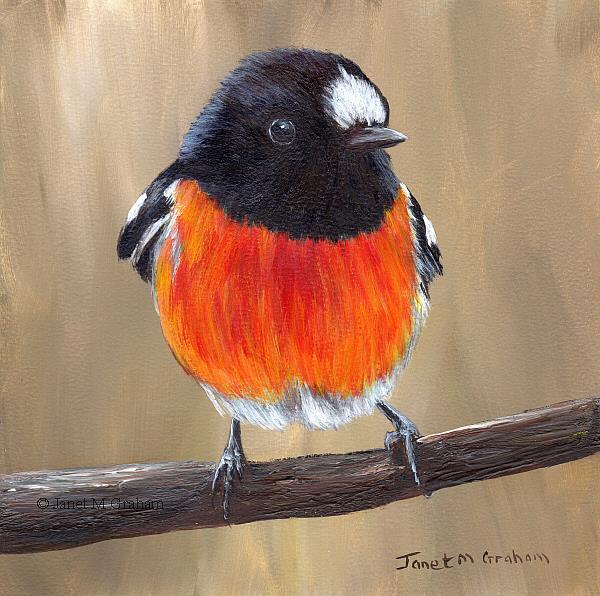 Art: Scarlet Robin No 5 by Artist Janet M Graham