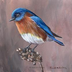 Art: Eastern Bluebird No 2 by Artist Janet M Graham