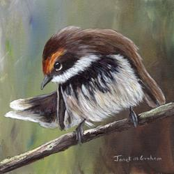 Art: Rufous Fantail by Artist Janet M Graham