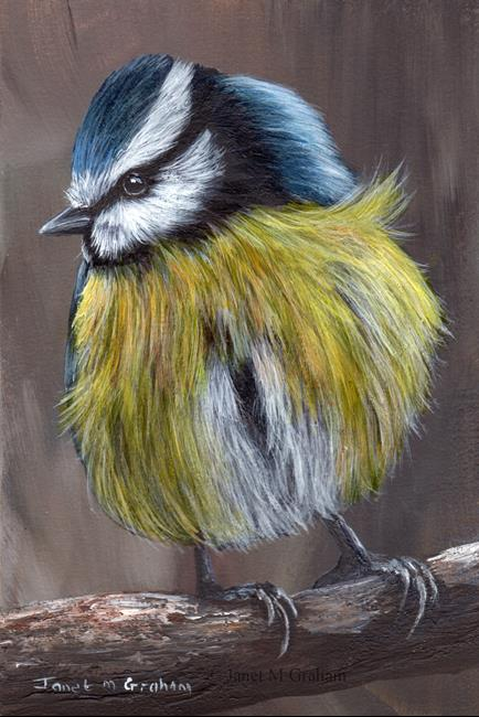 Art: Blue Tit No 6 by Artist Janet M Graham