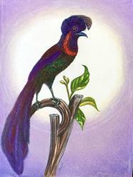 Art: Bird of Paradise 2 by Artist Alma Lee