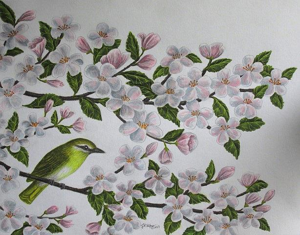 Art: Brandywine Blossoms by Artist Jackie K. Hixon