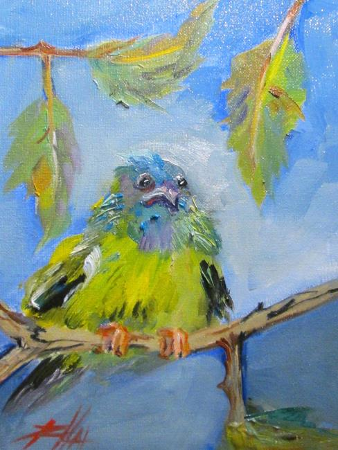 Art: Blue Dacnis-sold by Artist Delilah Smith
