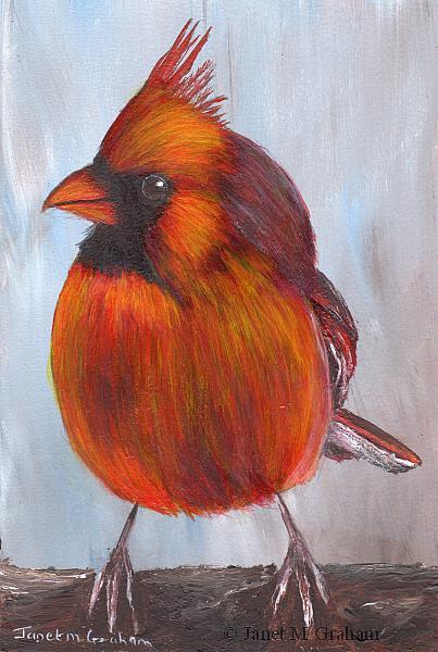 Art: Cardinal by Artist Janet M Graham
