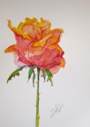 Art: Bright Rose by Artist Delilah Smith