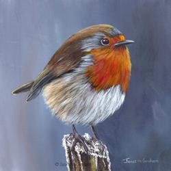 Art: Robin No by Artist Janet M Graham