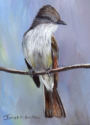 Art: Ash Throated Flycatcher ACEO by Artist Janet M Graham