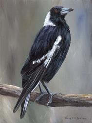 Art: Australian Magpie by Artist Janet M Graham