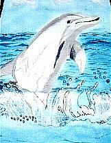 Art: dolphinshirt by Artist Rossi Kelton
