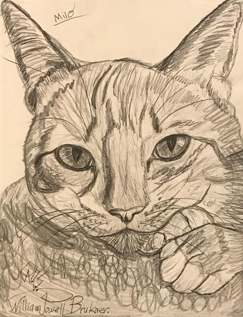 Art: MILO. The Sweet Lovable Cat. by Artist William Powell Brukner