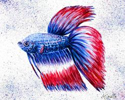 Art: Patriotic Betta by Artist Melinda Dalke