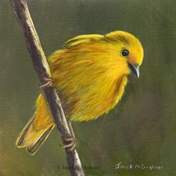 Art: Yellow Warbler No 3 by Artist Janet M Graham