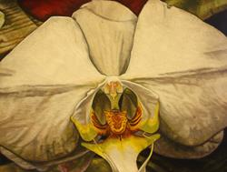 Art: Wild Wild Orchid by Artist Melissa Tobia