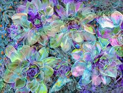 Art: Blue Frost by Artist Alma Lee