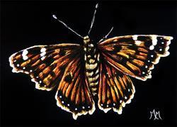 Art: Butterfly  (SOLD) by Artist Monique Morin Matson