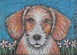 Art: Daisy Dog by Artist Melinda Dalke