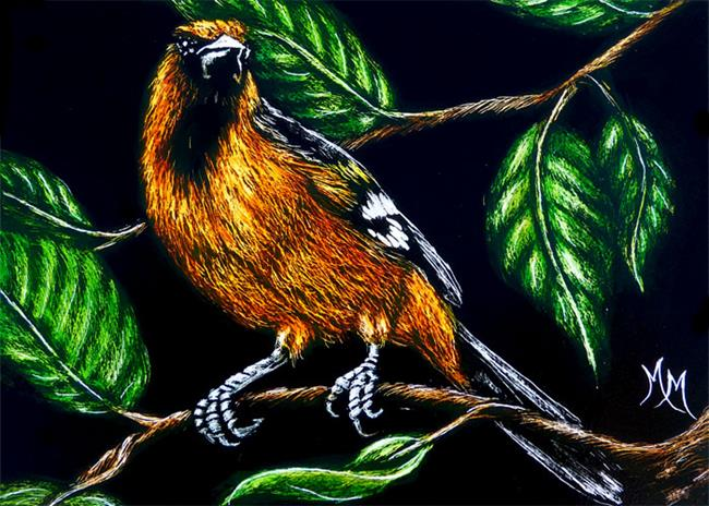 Art: Oriole  (SOLD) by Artist Monique Morin Matson