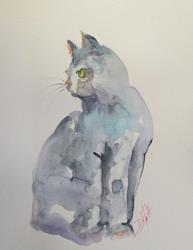 Art: Gray Cat by Artist Delilah Smith