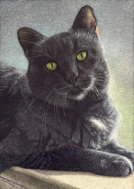 Art: Smokey by Artist Sandra Willard