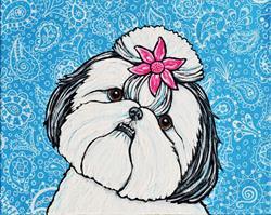 Art: Paisley Shih Tzu by Artist Melinda Dalke