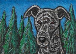 Art: Hound and Trees by Artist Melinda Dalke