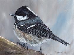 Art: Coal Tit No 3 by Artist Janet M Graham