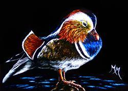 Art: Mandarin Duck by Artist Monique Morin Matson