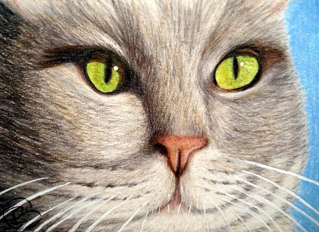 Art: Micky by Artist Pamela Godwin Manning